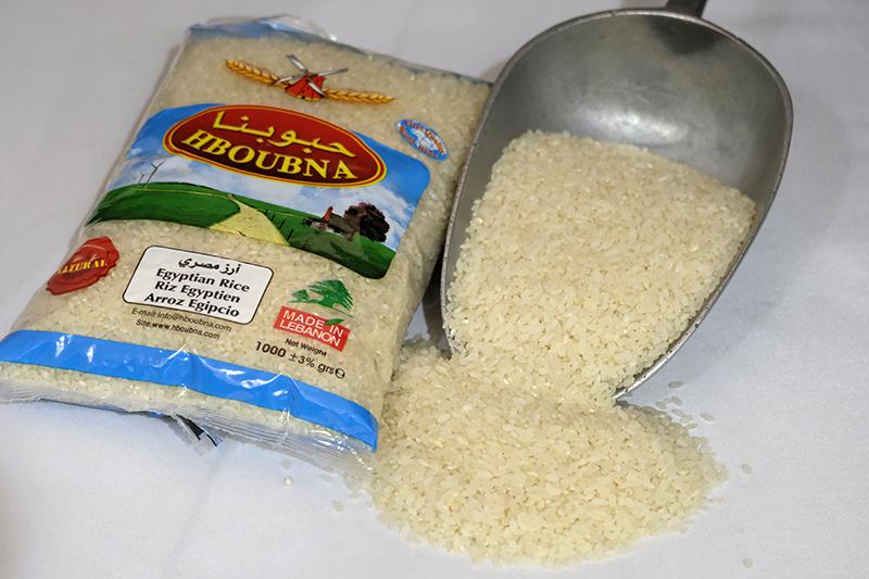 شكل الرز المصري